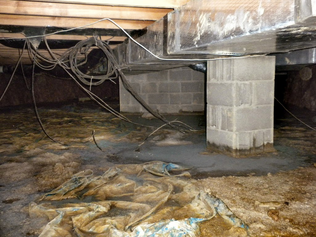 Nasty Ohio Crawlspace