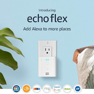 Amazon Echo Flex