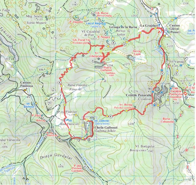 Traseu în Munții Apuseni: Cheile Galbenei