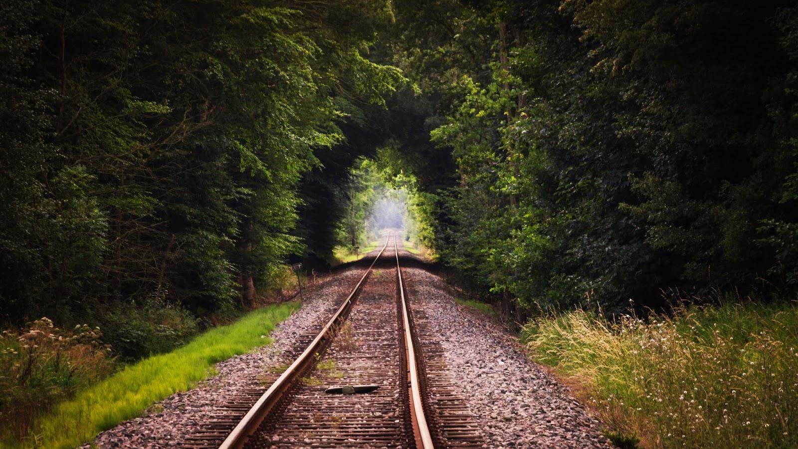 Beautiful Railway in the Nature Wallpaper