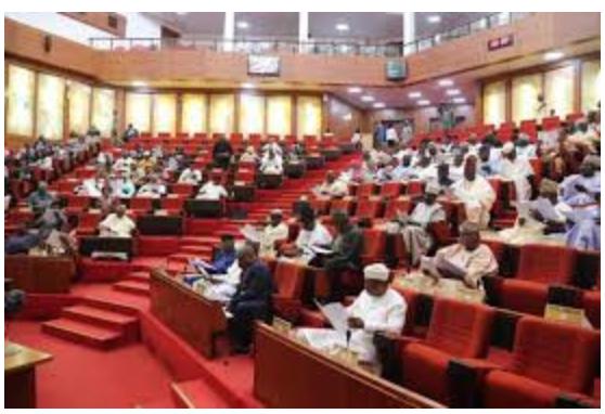 2021 budget : Senate passes N13.5trn