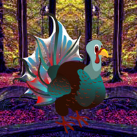 Games2Rule Fantasy Turkey Forest Escape