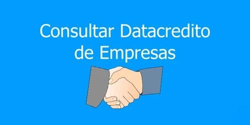 Cómo consultar el Datacrédito de una empresa