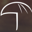 UMBRELLA ( FIRST Democratized Insurance For When Life Happens ) - ICO News