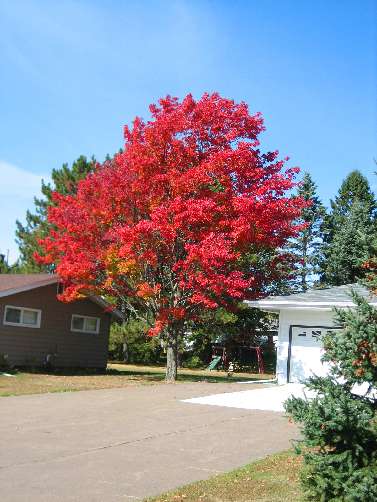 Craigslist Duluth Superior >> Cummings...and goings...: Week in Review: September 24