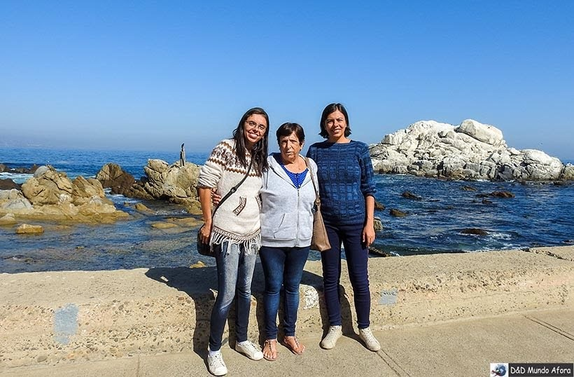 Praia de Viña del Mar - O que fazer em Viña del Mar em um dia, Chile