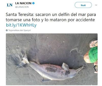 https://twitter.com/LANACION/status/699964143571505152/photo/1
