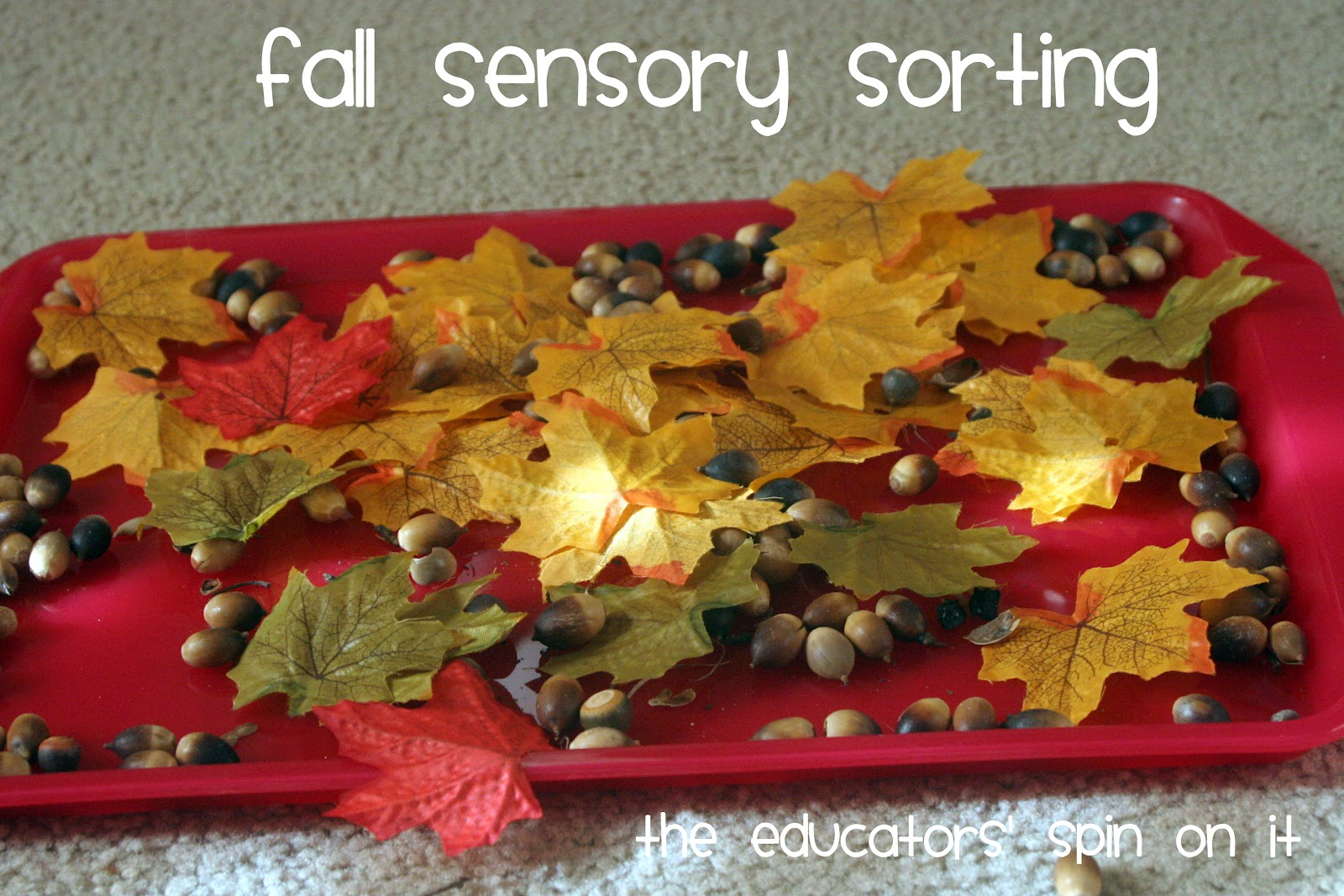 The Educators Spin On It 5 Simple Leaf Activities