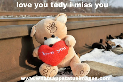Love You Teddy Images