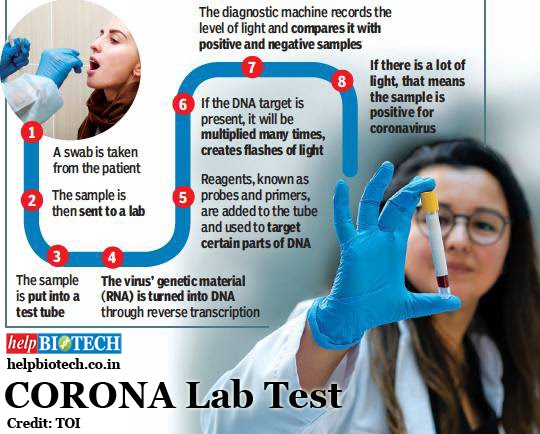 How does a Coronavirus Test Work?