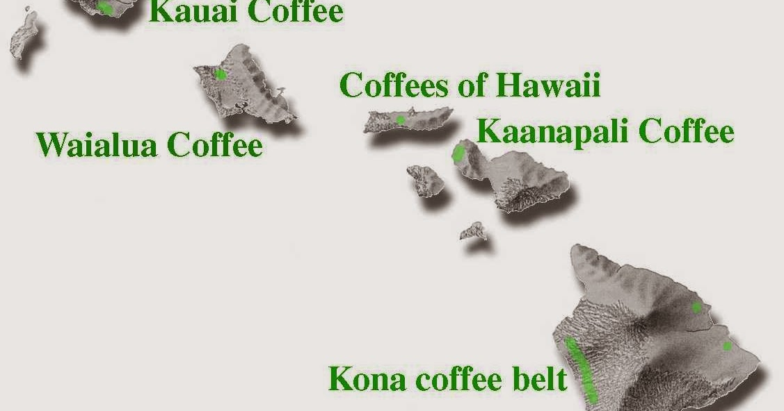 The Nice Drinks In Life: Hawaiian Coffee Kona Coffee Belt Map on kona brewing company, coffee countries belt, clothing belt, jewelry belt, kona brewery, kona brewing art, fish belt, beer belt, alabama belt, kona restaurants, kona island map, kona hawaii, the coffee belt, kona reef, plastic belt, kona plantation, hawaii belt, pulley and belt, starbucks coffee belt, ice belt,