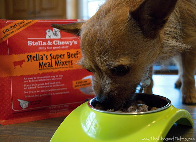 Mini Review: Stella & Chewy's Meal Mixers