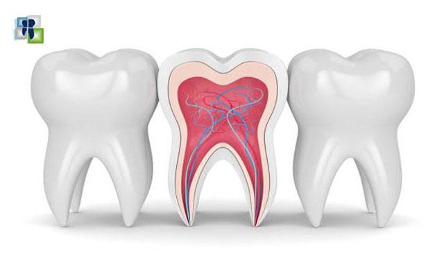 تصنيف أمراض لب الأسنان وعلاحها