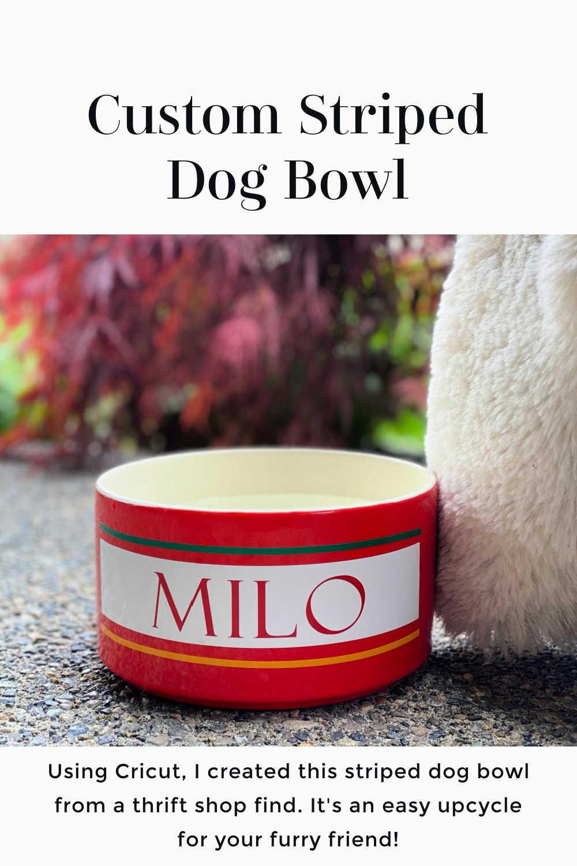 cricut vinyl striped dog bowl