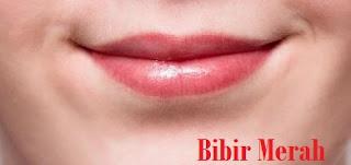 Bibir Merah Merona Hanya Dalam Waktu Seminggu, Coba Herbal Alami Berikut Ini