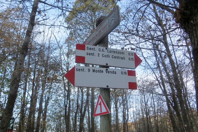 monte venda sentiero escursione