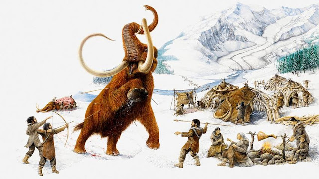 Humans 'hastened collapse and extinction' of woolly mammoth