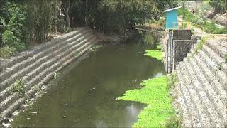 Sungai Mulai Tercemar Bakteri Di Lombok Tengah