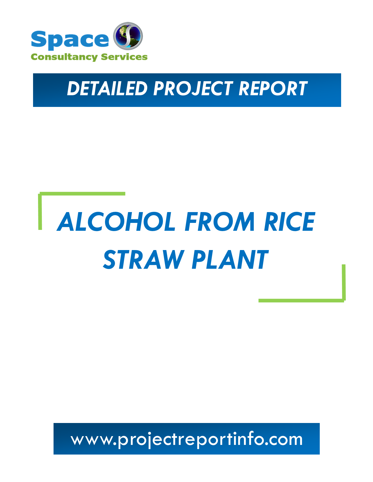 Project Report on Alcohol from Rice Straw Plant