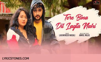 Tere Bina Dil Lagta Nahi Lyrics   - Yadit A, Bhavika M | #Lyricstones.com