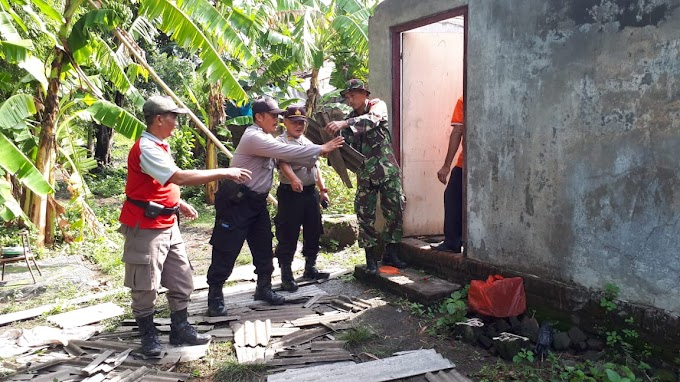 Hujan Lebat Disertai Angin Rusak Rumah Warga, Forkopimka Krembung Turun Bantu Warga