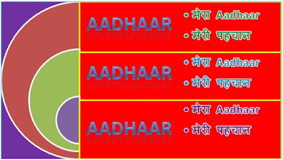 Download Aadhaar Card with 12 Numbers