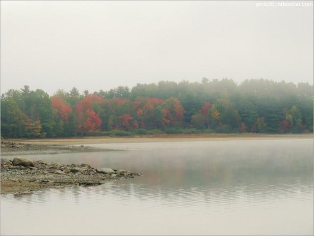 Lago con Niebla en las Cabañas Turísticas de Maine