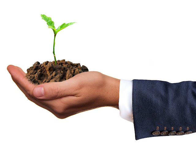 Bisnis pertanian kreatif