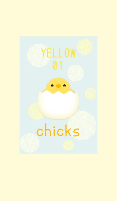 Chicks / Yellow01