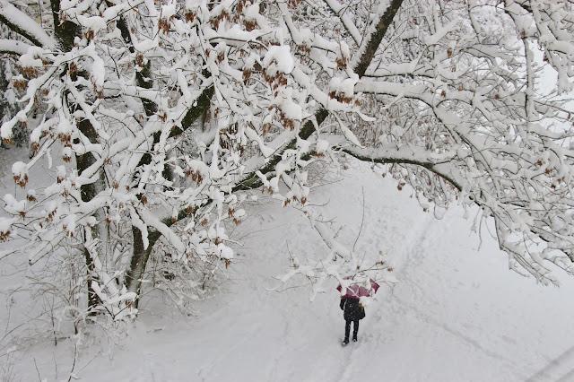 Zimske čarolije.