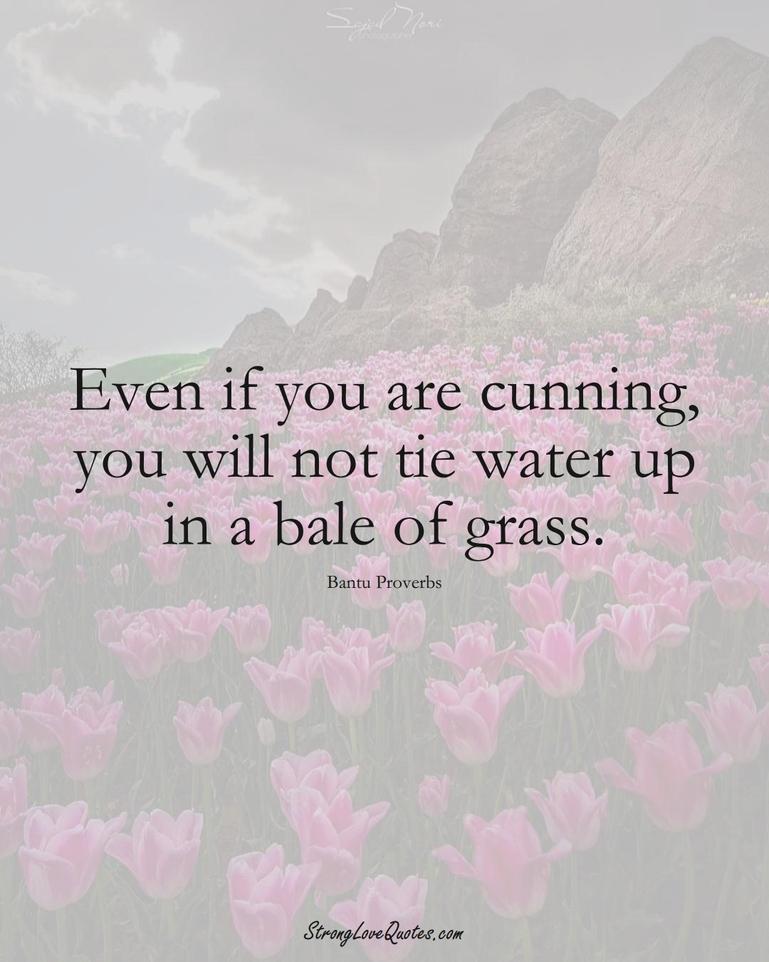 Even if you are cunning, you will not tie water up in a bale of grass. (Bantu Sayings);  #aVarietyofCulturesSayings