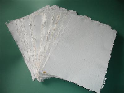 ¿Cuánto papel se debe reciclar para salvar un árbol?