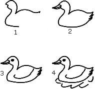 Cara menggambar bebek sedang berenang