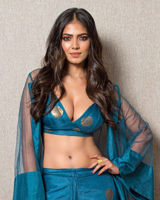 Malavika Mohanan Hot Photos, actress hot photos, hd wallpapers for download