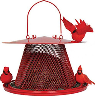 Bird Feeders for Cardinals: Reviews of the 9 Best Options
