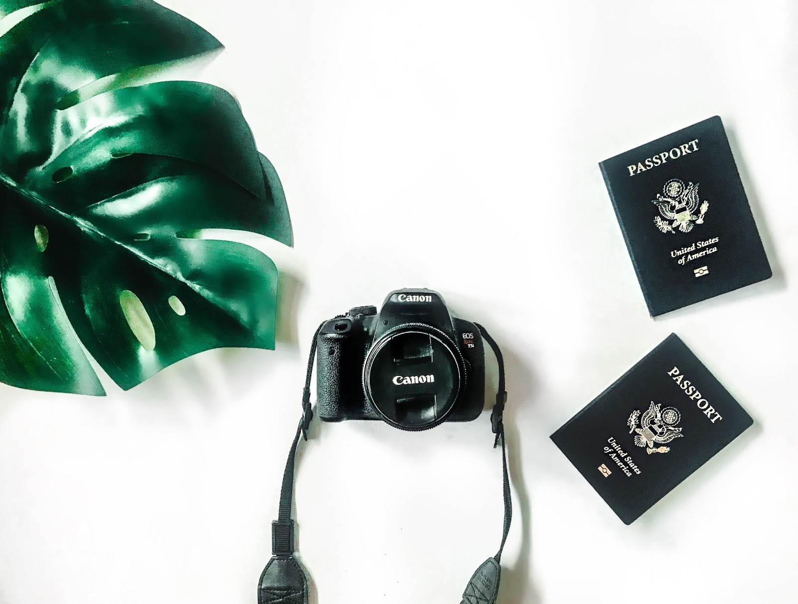 how to take your own passport photo at home
