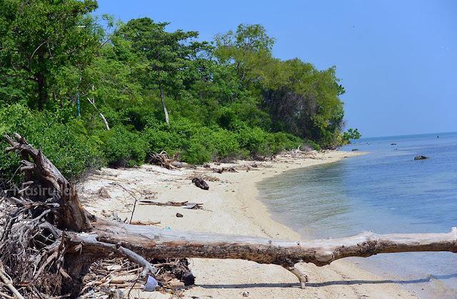 Pasir putih di setiap sudut pulau panjang jepara