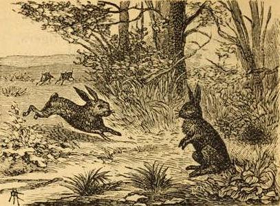 fabulas de iriarte los dos conejos