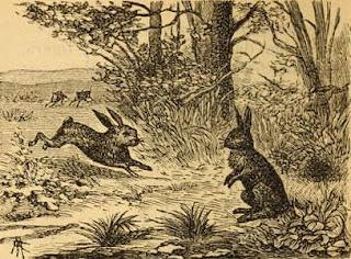 fabula corta los dos conejos moraleja