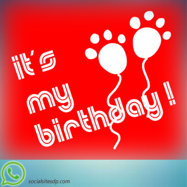 151 Best My Birthday Dp For Whatsapp Best Whatsapp Dp Social