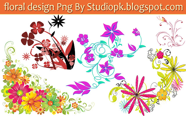 25 Floral Designs Png
