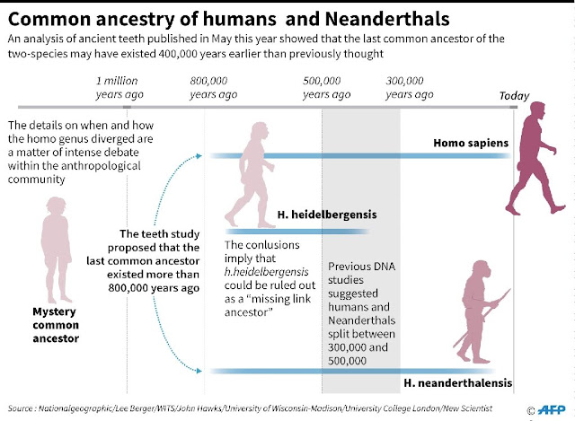 Following Neanderthals' footsteps to learn how they lived