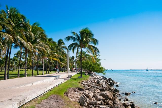 que hacer en Miami en verano