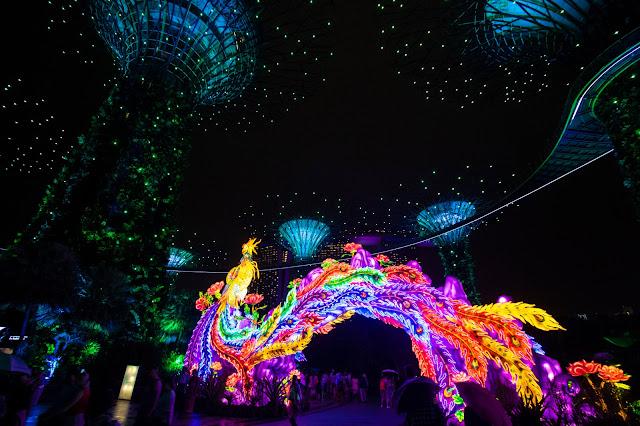 Supertree Grove-Gardens by the bay- Spettacolo di luci e suoni-Singapore