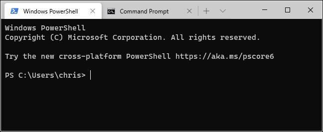 علامات التبويب PowerShell و موجه الأوامر في Windows الطرفية.