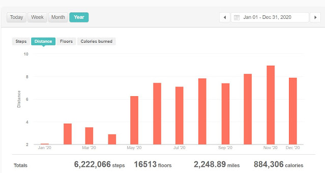 12 month fitbit stats