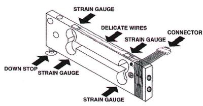 BIOMEDICAL ENGINEERING ,,: โหลดเซลล์แบบสเตรนเกจ (Strain