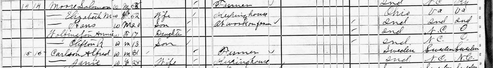 Climbing my Family Tree: 1880 Census: Elizabeth M. Bixler Wolfington Moore