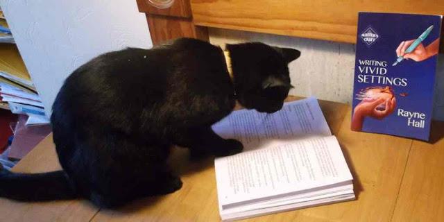 cb 9 - 10 Gatos pretos lendo livros