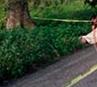 Hallan cadáver de un hombre en autopista Nuevo Teapa-Cosoleacaque
